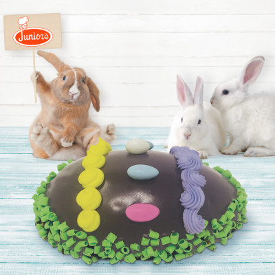 Easter Egg Cheesecake with bunnies